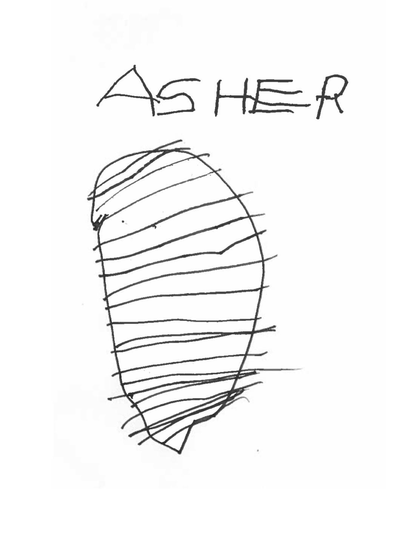 asher-nest-1
